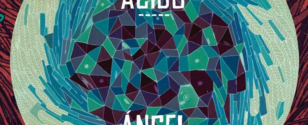 Cámino Ácido, de Ángel Stanich.