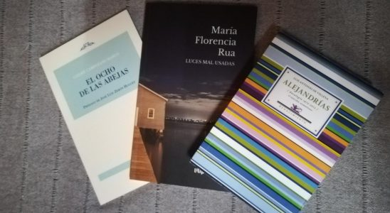 Libros para vencer el miedo al futuro.