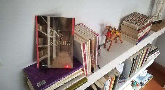 En los estantes, de Javier Gilabert.